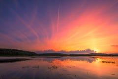 Красивый заход солнца лета над озером Стоковые Фото