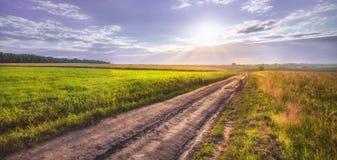 Красивый заход солнца лета Стоковое Изображение
