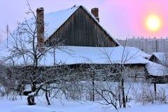 Красивый заход солнца зимы с деревьями в снеге Стоковое Изображение RF