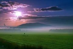 Красивый заход солнца над зеленым полем Стоковые Изображения RF