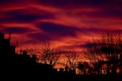 Красивый заход солнца над крышами Стоковое фото RF