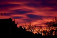 Красивый заход солнца над крышами Стоковое Изображение RF