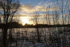 Красивый заход солнца над полем и лесом Стоковые Фото