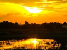 Красивый заход солнца на поле Стоковое Изображение