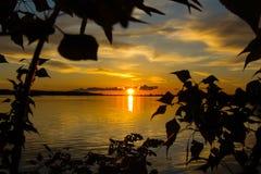 Красивый заход солнца на пруде Стоковая Фотография RF