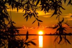 Красивый заход солнца на пруде Стоковые Изображения RF