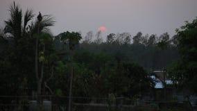 Красивый заход солнца на сельском районе Таиланда акции видеоматериалы