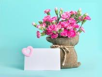 Красивый зацветать розовой гвоздики цветет дальше с текстом карточки Стоковое Изображение RF