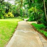 Красивый зеленый парк с путем замотки Стоковое фото RF