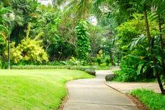Красивый зеленый парк с путем замотки Стоковые Изображения