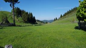Красивый зеленый луг горы стоковые изображения