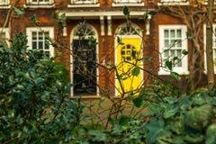 Красивый зеленый фасад кирпича вегетации на заднем плане t Стоковое Изображение