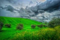 Красивый зеленый холм Стоковые Фотографии RF