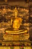 Красивый золотой Будда Стоковое Изображение