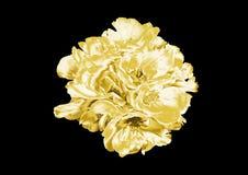 Красивый золотой цветок иллюстрация штока