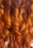 Красивый, здоровый, длинный, курчавый, красный конец волос вверх Создайте скручиваемости с завивая утюгами Стоковое Изображение