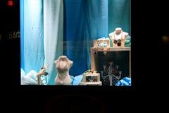 Красивый дизайнерский комплект ювелирных изделий в окне лидирующего магазина, Бостона, массы, декабря 2014 Стоковая Фотография
