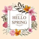 Красивый дизайн предпосылки весны для одеяния Стоковое фото RF