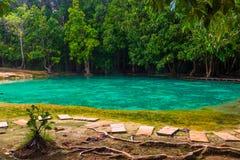Красивый изумрудный бассейн популярное место в Krabi для посещения Стоковая Фотография RF