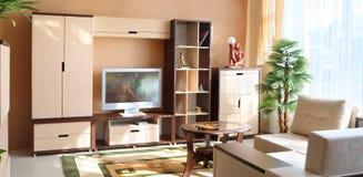 Красивый интерьер изготовленной на заказ живущей комнаты Стоковое Изображение RF