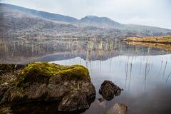 Красивый ирландский ландшафт горы с озером весной Стоковое Изображение