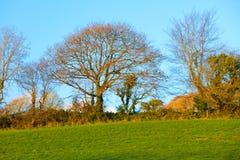 Красивый ирландский осенний ландшафт fields пейзаж в Co.Cork, Ирландии. Стоковое Изображение RF