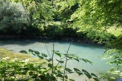 Красивый источник ljubljanica в vrhnika, Словении стоковая фотография rf