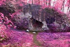 Красивый и красочный ландшафт фантазии в азиатском пурпурном ультракрасном стиле фото стоковые изображения
