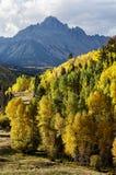 Красивый и красочный пейзаж осени скалистой горы Колорадо стоковое изображение