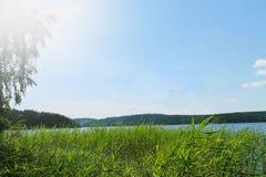 Красивый и солнечный день в лете Стоковая Фотография RF