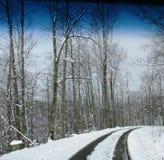 Красивый идя снег день стоковое фото rf
