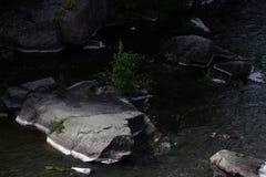 Красивый каньон Fjadrargljufur с рекой и большими утесами Bucky каньон голодает река стоковые изображения rf