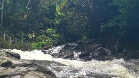 Красивый каскадируя водопад в тропических джунглях, видеоматериал