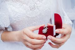 Красивый комплект аксессуаров свадьбы ` s женщин Утро ` s невесты Стоковое фото RF