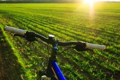 Красивый конец вверх по сцене велосипеда на заходе солнца, Стоковая Фотография RF