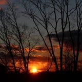 Красивый конец Стоковая Фотография RF