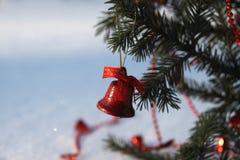 Красивый красный колокол на ветви хвойного дерева Стоковое Изображение RF