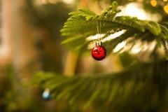 Красивый красный орнамент шарика для рождества Стоковая Фотография