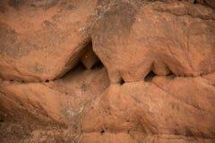 Красивый крупный план скал песчаника в Латвии Близкая картина образований песка Пещеры песчаника на взморье Стоковые Фото
