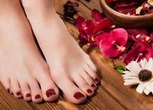 Красивый классический красный pedicure на женской руке Конец-вверх Стоковое Фото