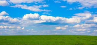 Красивый ландшафт весны с зеленым лугом и голубым небом с облаками стоковые фотографии rf
