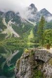 Красивый ландшафт высокогорного озера с кристаллом - ясные зеленые вода и горы в предпосылке, Gosausee, Австрии установьте романт Стоковые Изображения RF
