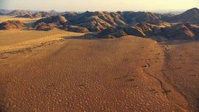 Красивый ландшафт в Kalahari с большой красной дюной и яркими цветами стоковая фотография