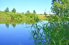 Красивый ландшафт голубое озеро среди древесины в России Сибире стоковое фото