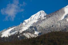 Красивый ландшафт горы в Кавказе Стоковые Изображения RF