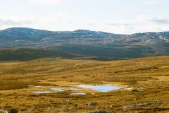 Красивый ландшафт горы с озером в расстоянии Горы осени в Норвегии Стоковые Фото