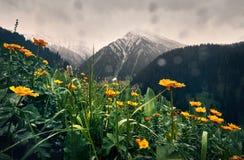 Красивый ландшафт гор стоковое изображение rf