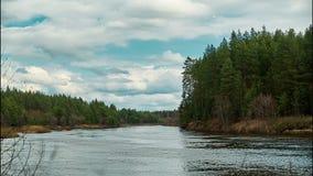 Красивый ландшафт живой природы Река в середине подолов времени леса сток-видео