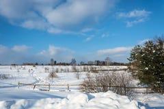 Красивый ландшафт зимы в солнечном морозном дне Стоковая Фотография