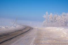 Красивый ландшафт зимы с покрытыми снег деревьями в тумане стоковое изображение